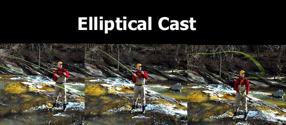 elliptical cast