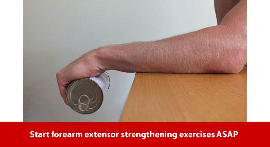 forearm extensor exercises